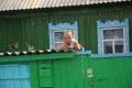 Фоторепортаж ''Комсомолки'' 6